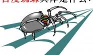 百度蜘蛛具体是什么?